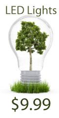 LED Light Bulbs - $9.99