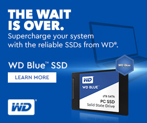 Western Digital Blue SSD