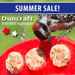 Shop Duncraft Wildbird Superstore Summer Essentials!