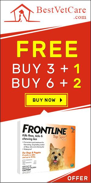 Buy Frontline Top Spot Online