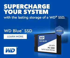Western Digital 3D NAND SATA SSD Blue