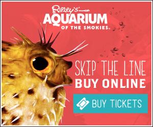 gatlinburg aquarium discount