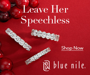 Blue Nile Holiday Banner