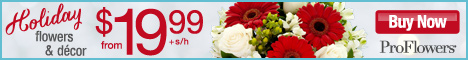 Holiday Flowers from $19.99