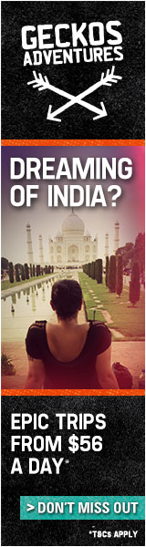 Geckos India Tours