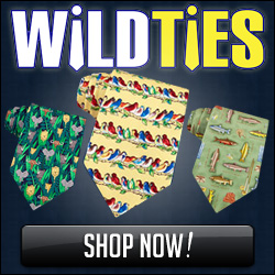 WildTies.com
