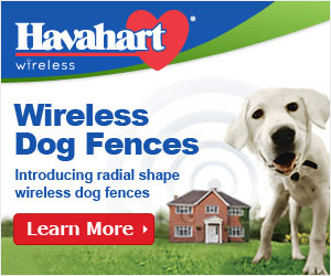 Havahart Wireless Dog Fences