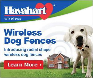 Havahart Wireless Dog Fences