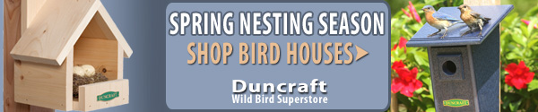 Shop Duncraft Wildbird Superstore for all your spring nesting needs!