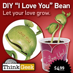 DIY - I Love You Bean