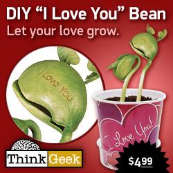 DIY - I Love You Bean