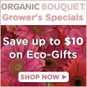 Organic Style - Eco-Friendly Apparel