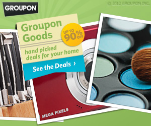 groupon 2012 holiday toy deals