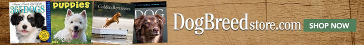 Shop DogBreedStore.com Today!