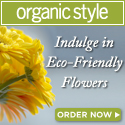 Organic gifts for the holidays