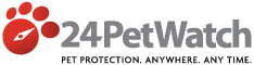 Pet Health Insurance Policy Options for Cats and Dogs