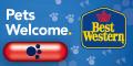 Best Western Beaver Creek pet friendly hotels, dog friendly hotels near Beaver Creek, Colorado; hotels in Eagle County pets allowed
