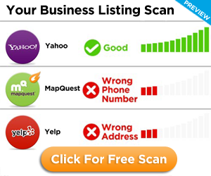 Your Business Listing Scan
