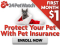 Pet Health Insurance for Cats &Dogs