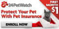 Insure your Pets