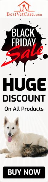 Lowest Prices of the Year with Extra 15% Off on Black Friday Saving Deals