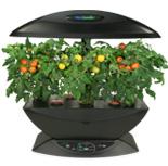Buy AeroGarden. Indoor gardening.  Herb appeal collection. Grow your own herbs.