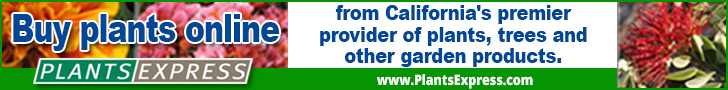 Buy plants online from California's premier provider of plants, trees and other garden products at P
