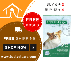 Avail Free Doses of Advantage Dogs