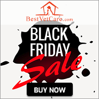 Image for Black Friday Sale 2019