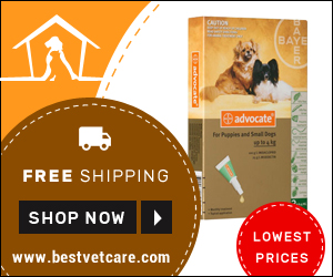 Image for Buy Advantage Multi Online at Cheapest Price + Extra 10% Off & Free USA Shipping