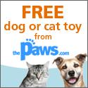 Free Pet Toy