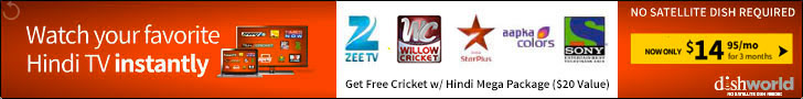 Hindi TV with free Willow Cricket