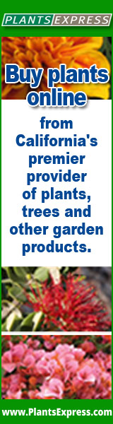 Buy Plants Online from California's premier provider of plants, trees and garden products