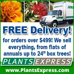 Free delivery! for orders over $499.We sell everything from flats of annuals up to 24