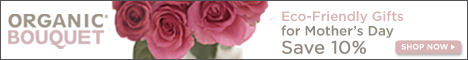 OrganicBouquet.com -Winter Eco-Elegant Flowers