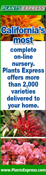 California's most complete online nursery. Plants Express offers more than 2,000 varieties delivered