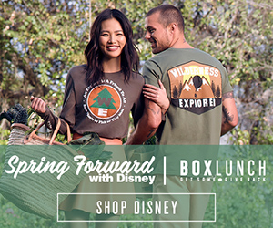 Disney Spring Merchandise at BoxLunch!