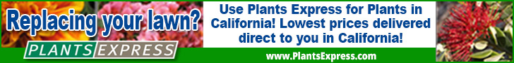 Replacing your lawn? Use Plants Express for plants in California! Lowest prices delivered direct to