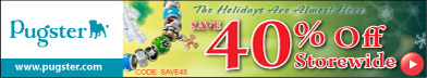 Daily Special  Offer ! 392x72