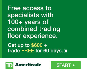 td ameritrade investment management review