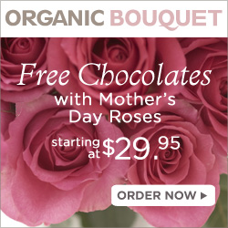 Free Chocolate Gift with Mother's Day Roses
