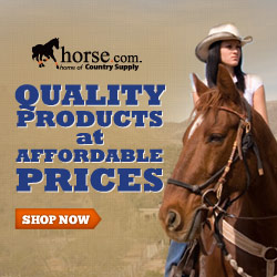 100's of New Products at Horse.com!