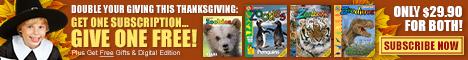 Zoobooks Magazine Coupon