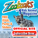 Free Issue, Poster & Stickers Zoobooks Magazine