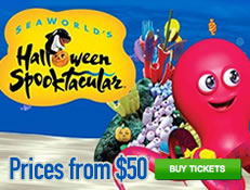 SeaWorld Halloween Spooktacular - Park Entrance only $50!