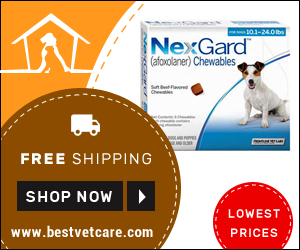 Image for Super Savings on Online Nexgard Chewables + Free Shipping in USA