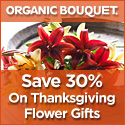 Save 40% On Our Beautiful Fall Bouquet At OrganicBouquet.com! Click Here!