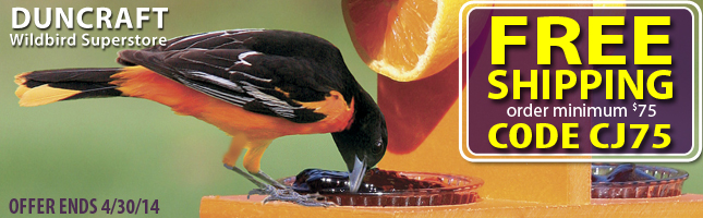 Bird Feeding Enthusiasts! Birds need ice-free water year-round for survival. We offer a wide selecti