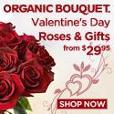 Eco-Elegant Valentines Day Flowers & Gifts