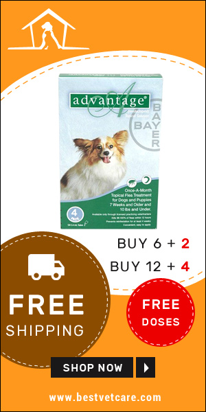 Online Advantage Flea For Dog